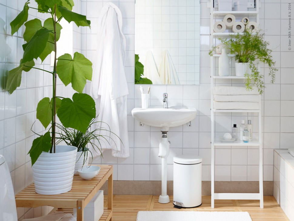 Adorable-plants-in-white-potted-for-bathrooms-with-wooden-railing-table-top-and-ladder-shelves-plus-white-ceramic-wall-also-frame-less-wall-mirror-970x728