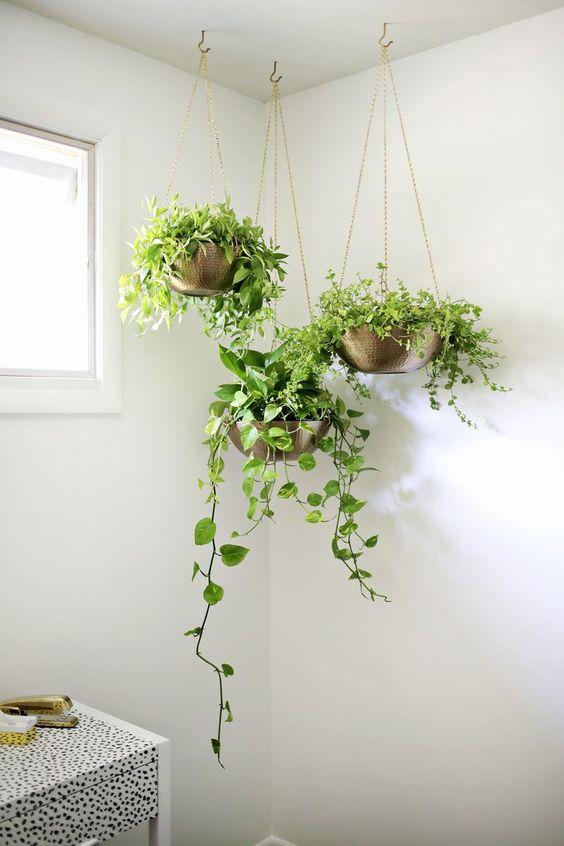 Zelenilo u kupaonici (10)