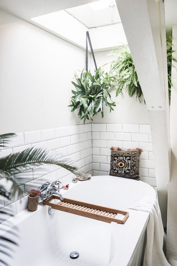 Zelenilo u kupaonici (5)
